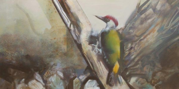'Green Woodpecker' 40x60 cm acrylics on canvas VERKOCHT